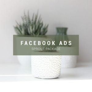 Affordable Facebook Ads Management