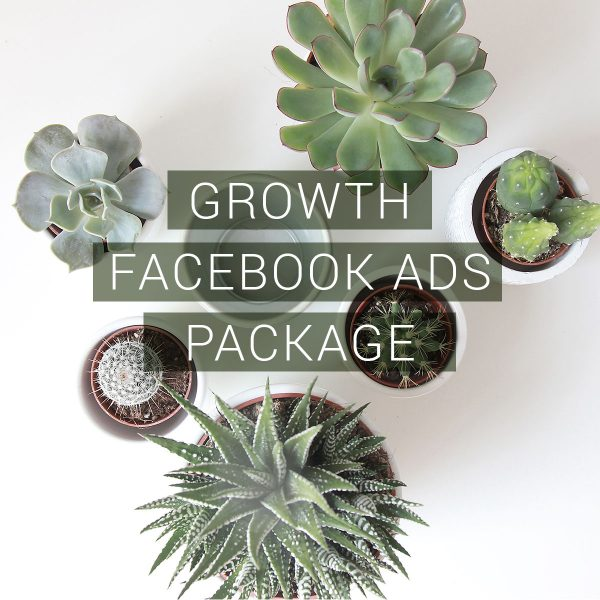 Facebook Ads Management - Growth Package