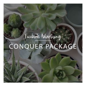 Facebook Marketing Conquer Package